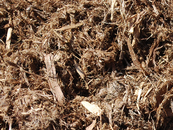 Red Cedar Mulch