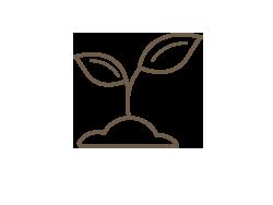 Premium Soils & Mulch